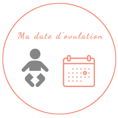 calcul ovulation